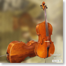 Shen Stradivari Willow